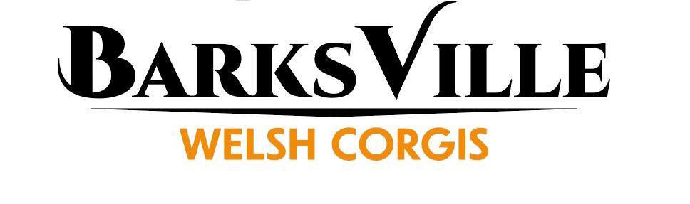 Barks Ville Corgis